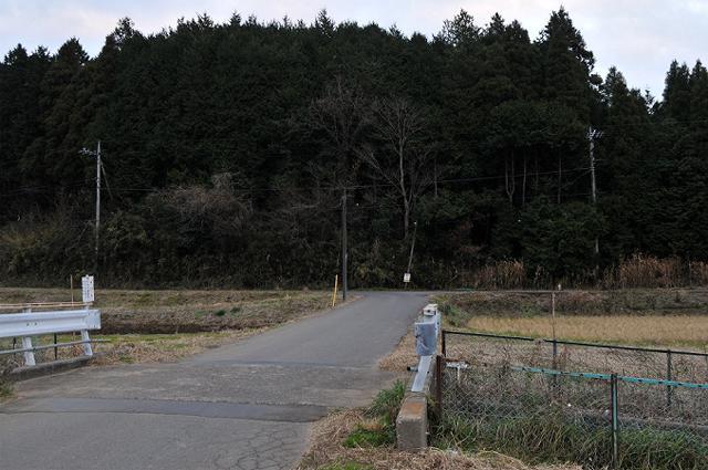 7田んぼ沿いの道へ